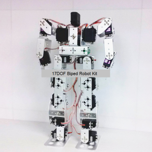 17DOF Biped Robot Front View